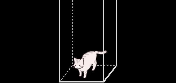 ネコちゃんルーム