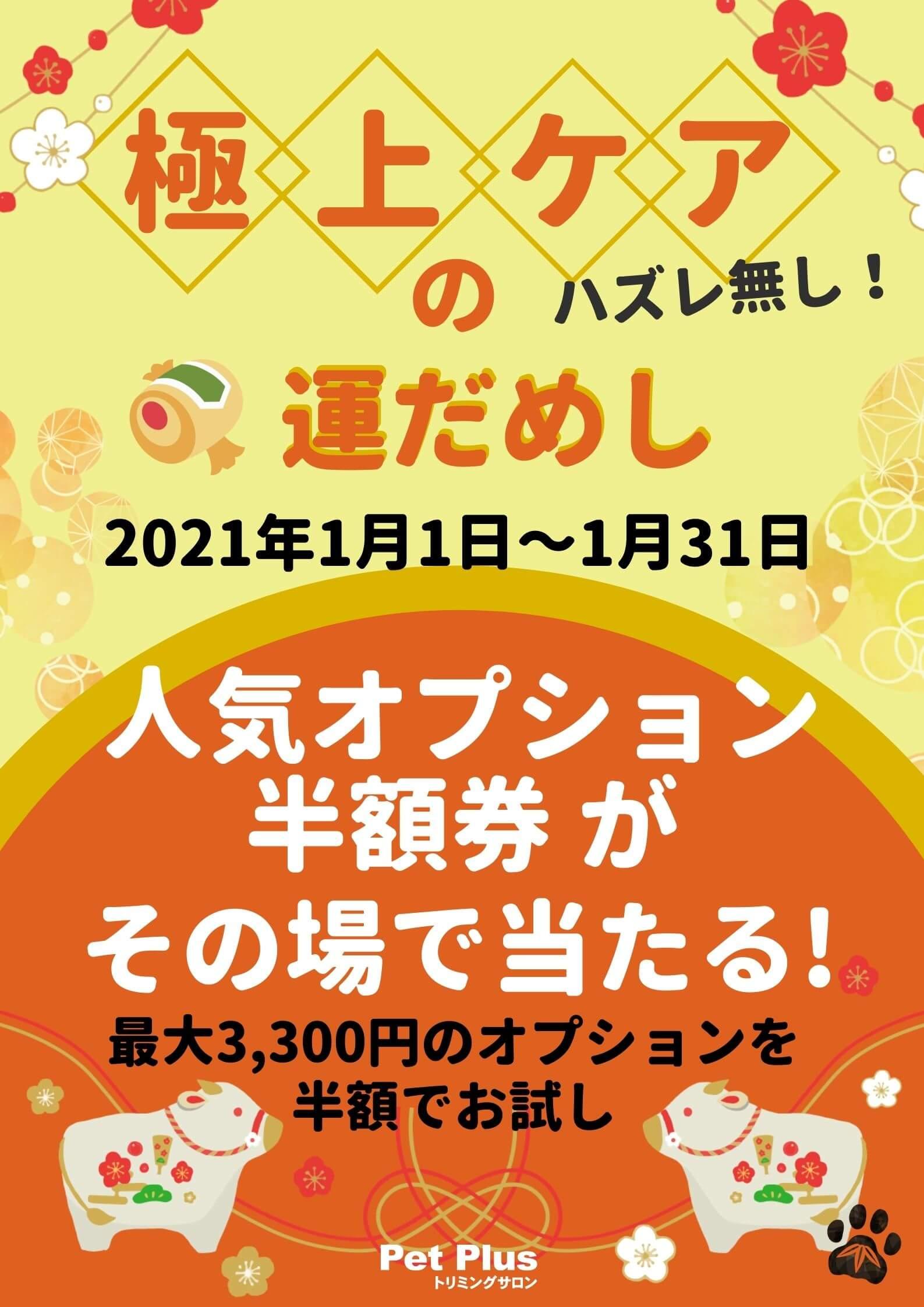 1月1日~1月31日開催 極上ケアの運だめしキャンペーン!!