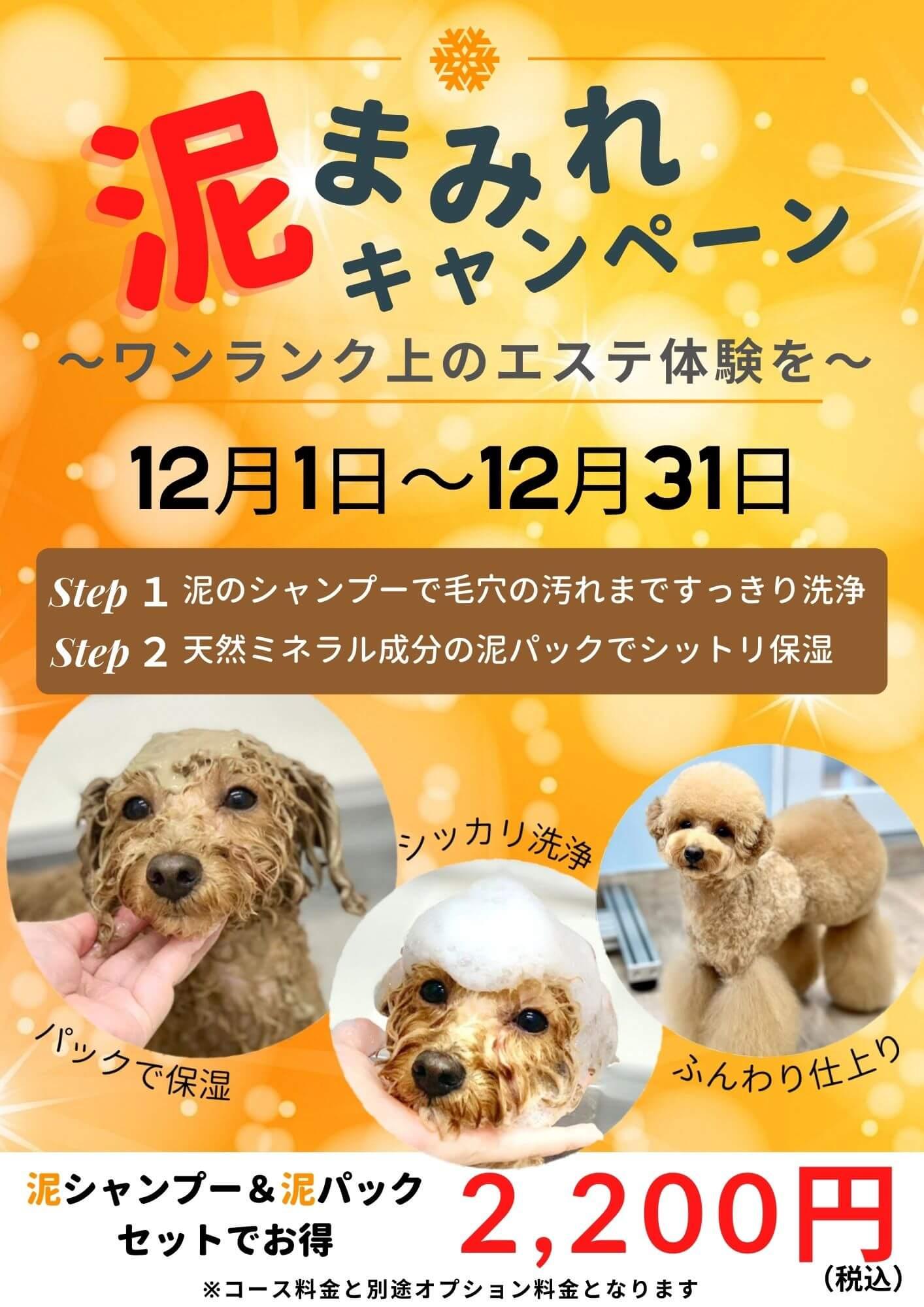 12月1日~31日開催 泥まみれキャンペーン!!