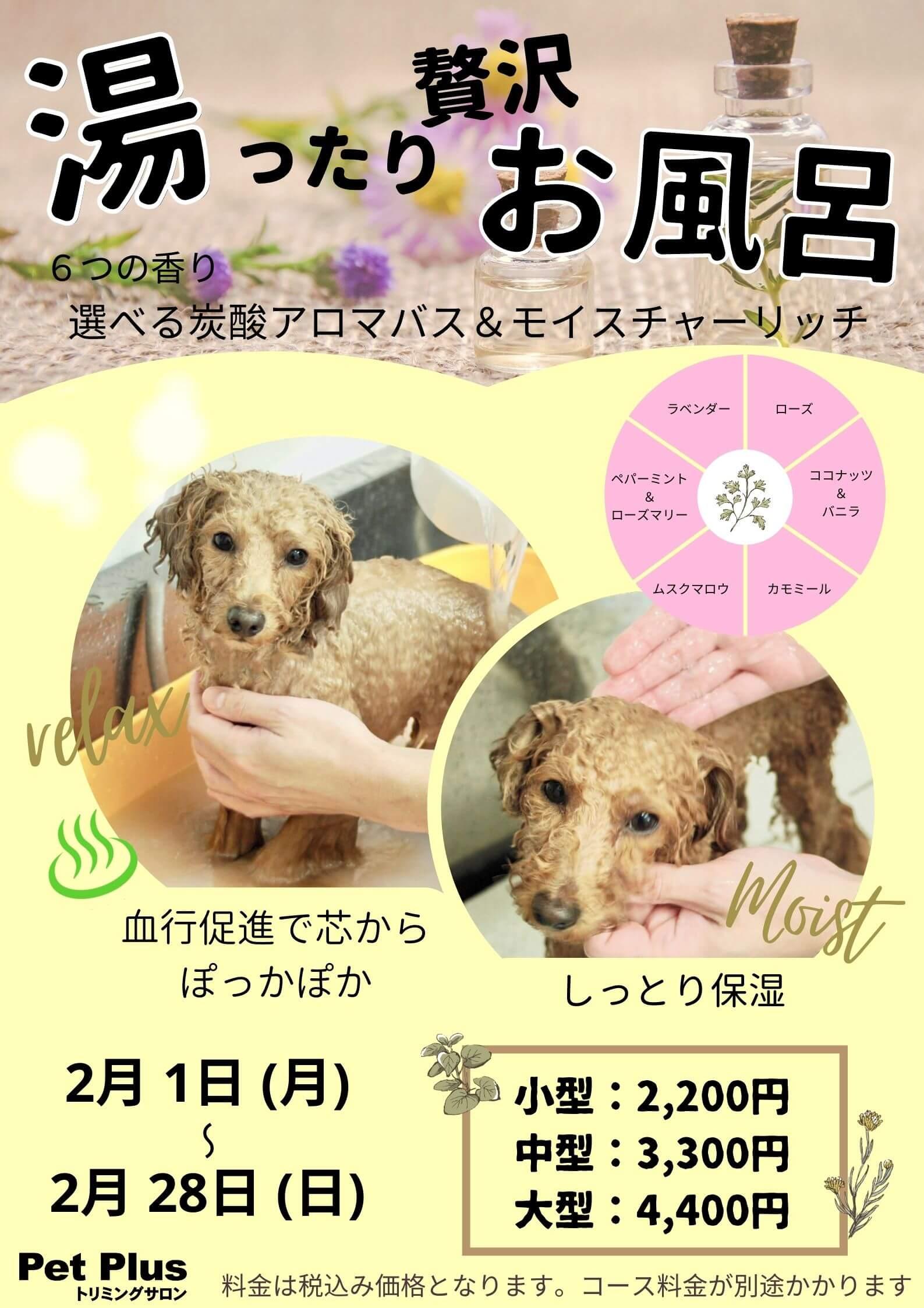 2月1日~2月28日開催 湯ったり贅沢お風呂キャンペーン!!