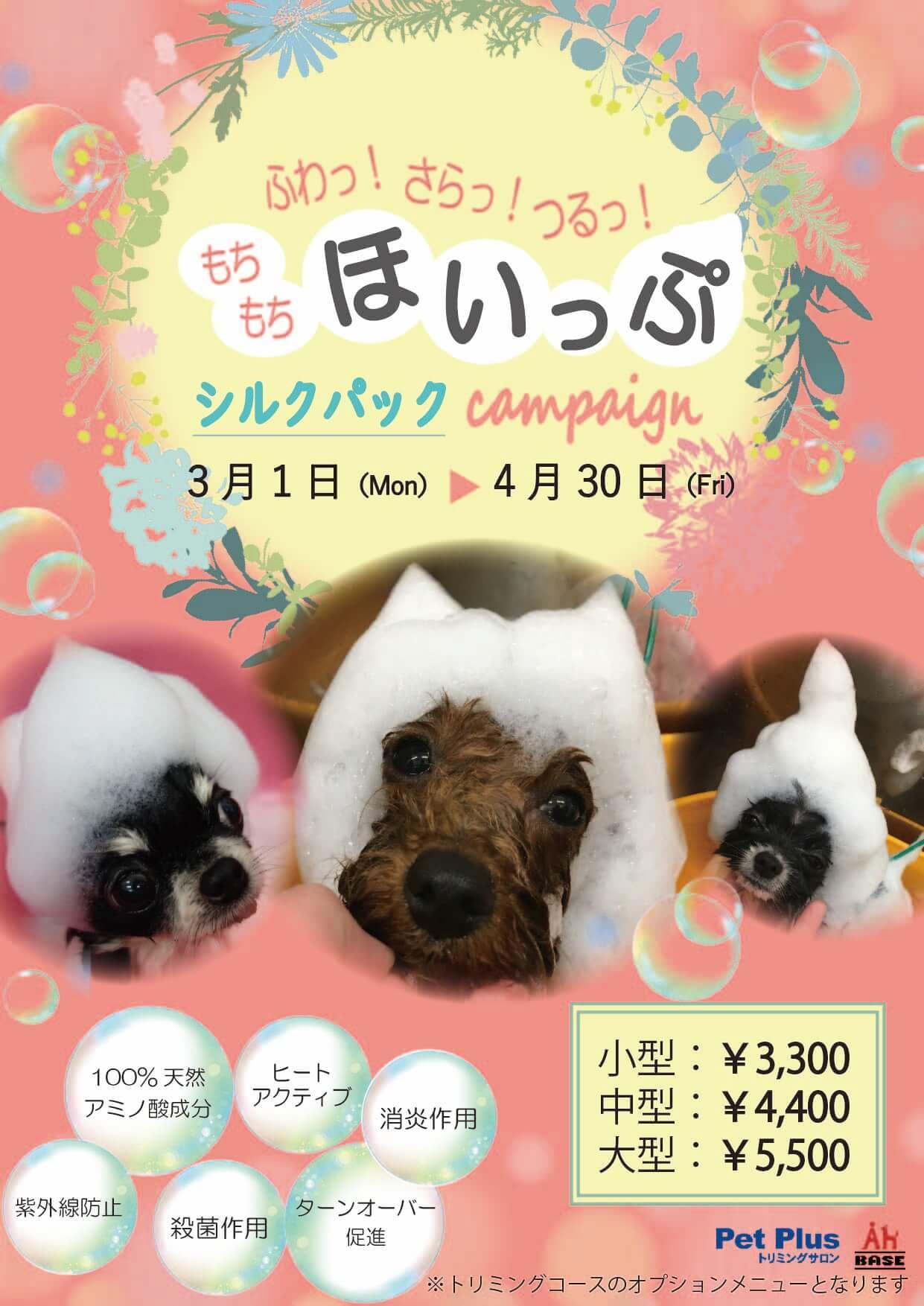 3月1日~4月30日開催 ふわっさらっつるっ もちもちほいっぷシルクパックキャンペーン!!