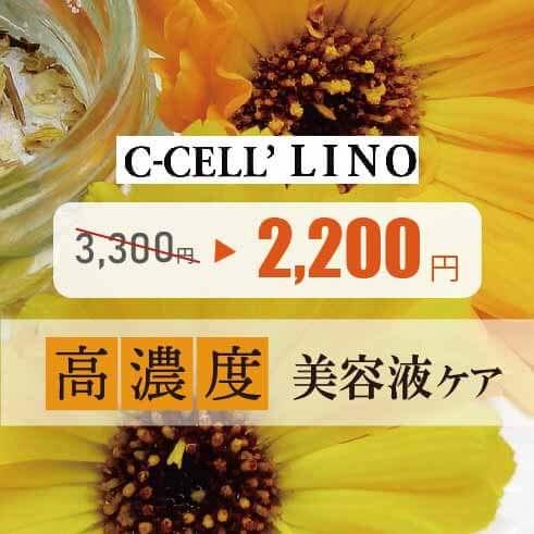 【期間限定】高濃度美容液シャンプー シセルリノ 1,100円off!!
