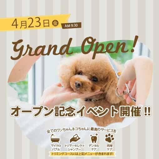 ペットプラストリミングサロン浜田山店 オープニングキャンペーン
